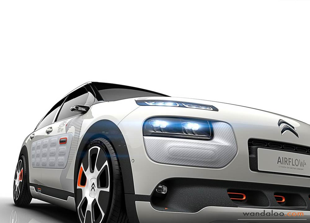 http://www.wandaloo.com/files/2014/09/Citroen-C4-Cactus-Airflow-2L-Concept-2014-02.jpg