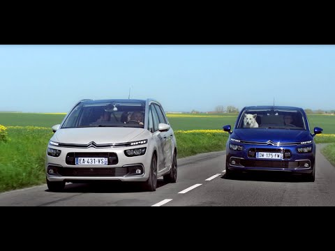 Nouveau-Citroen-C4-Picasso-2016-video.jpg