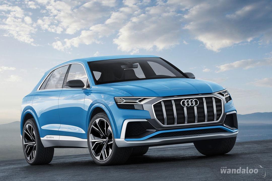 http://www.wandaloo.com/files/2017/01/Audi-Q8-Concept-2018-10.jpg