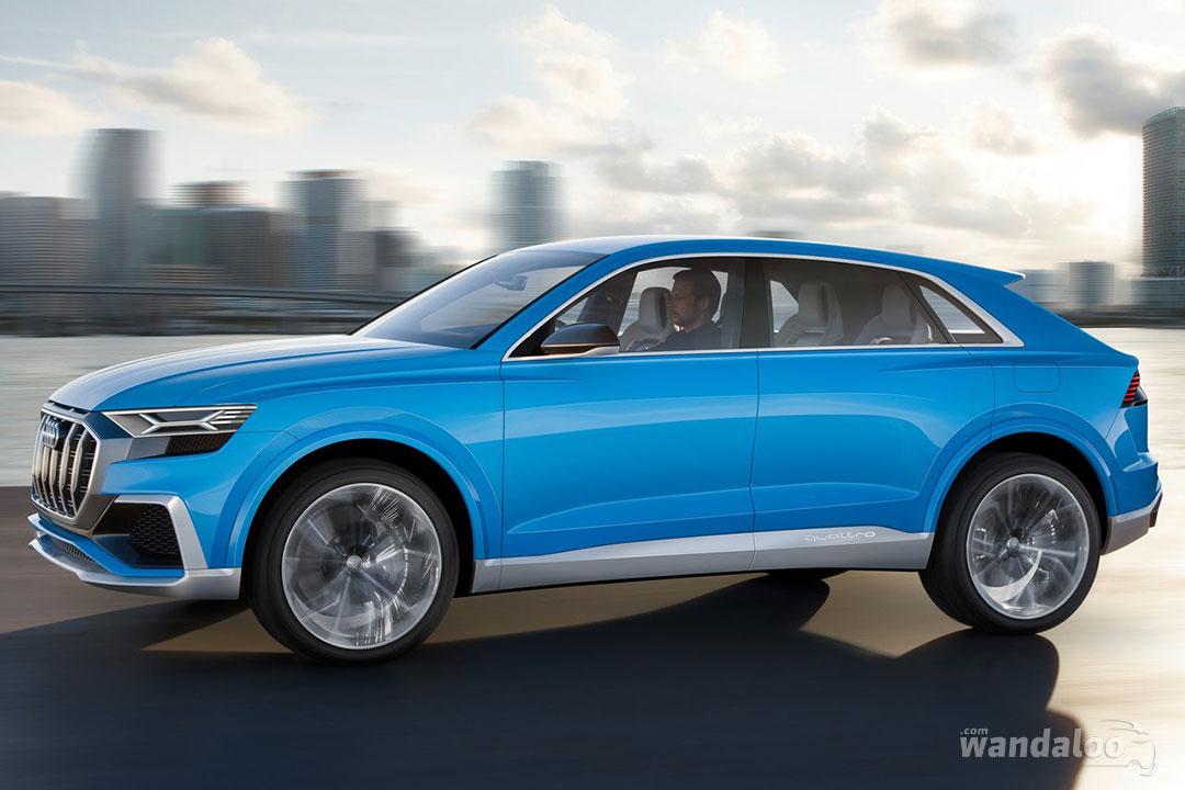 http://www.wandaloo.com/files/2017/01/Audi-Q8-Concept-2018-11.jpg