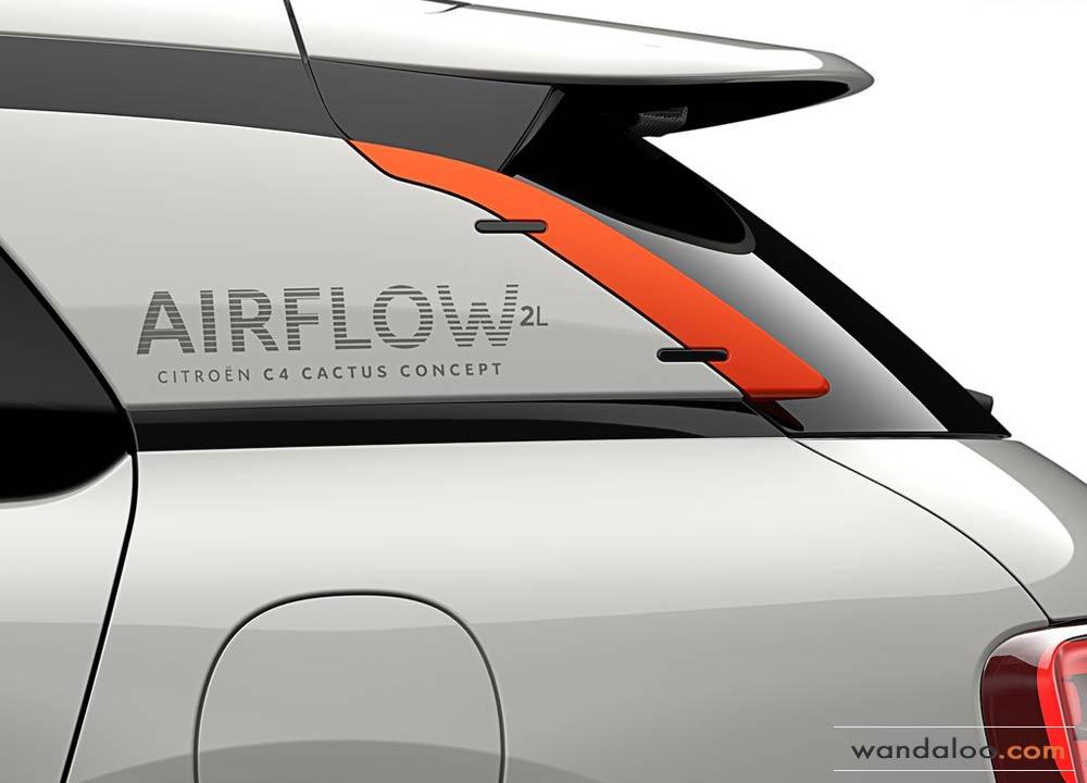 https://www.wandaloo.com/files/2014/09/Citroen-C4-Cactus-Airflow-2L-Concept-2014-01.jpg