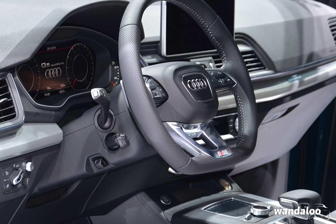 https://www.wandaloo.com/files/2016/10/Mondial-Paris-2016-Audi-Q5-07.jpg