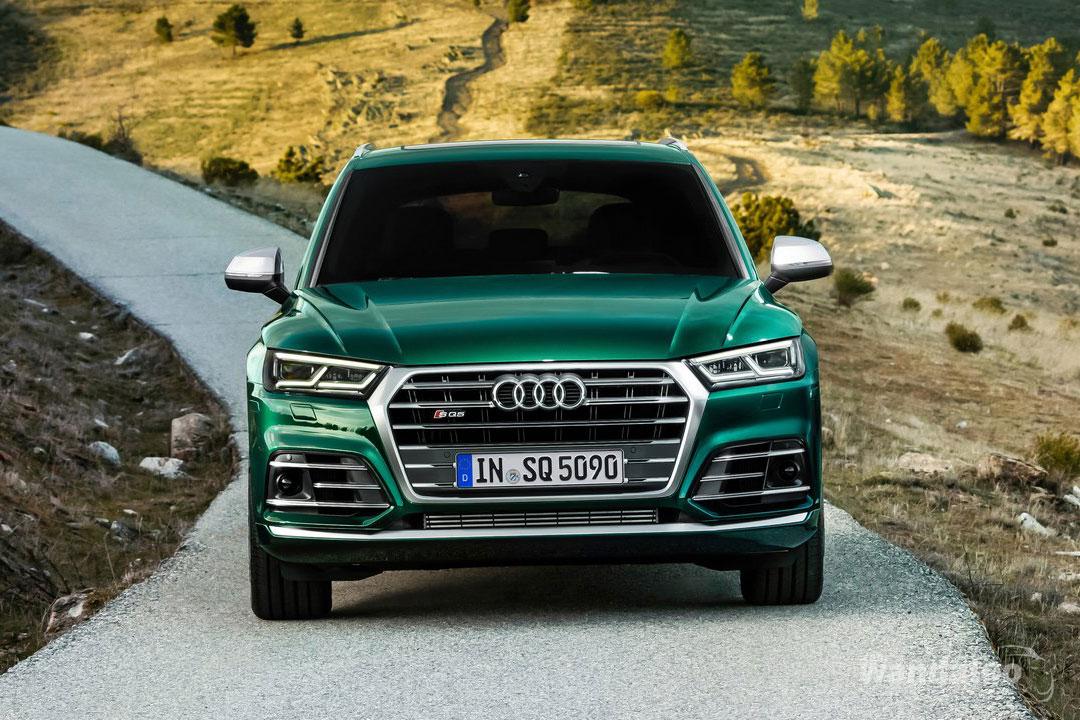https://www.wandaloo.com/files/2019/02/Audi-SQ5_TDI-2020-1280-0d.jpg