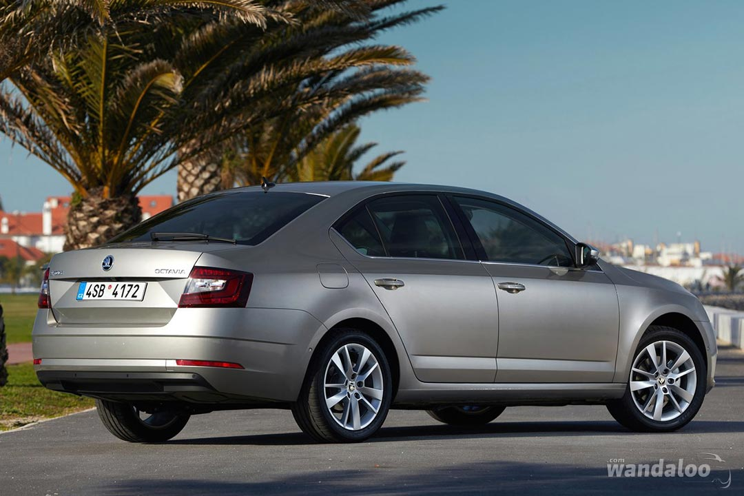https://www.wandaloo.com/files/Voiture-Neuve/skoda/Skoda-Octavia-2017-1280-20.jpg
